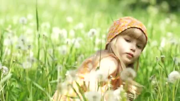 Little girl playing on  meadow o