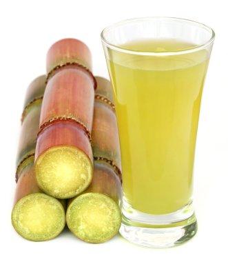Piece of sugarcane juice