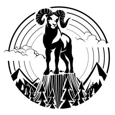 Mountain bighorn sheep.