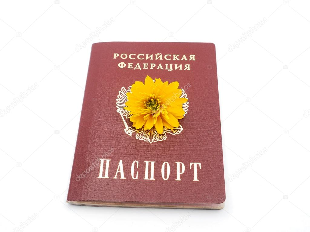Russian passport and flowers on a white background