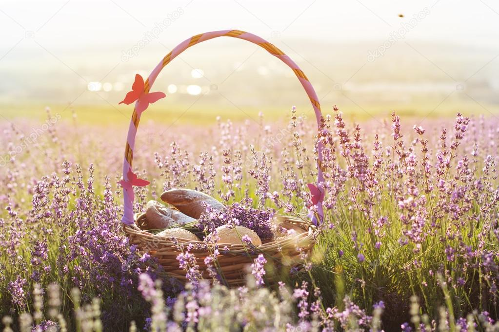 Basket with sweet-stuff in purple lavender flowers