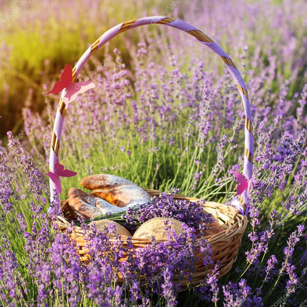 Basket with cookies in purple lavender flowers