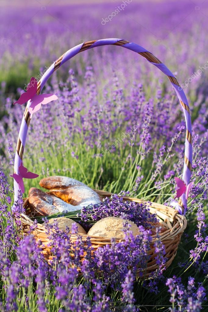 Closeup picture of basket in purple lavender flowers