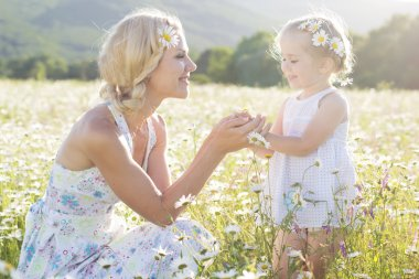 Happy family  in field of daisy flowers,summer time