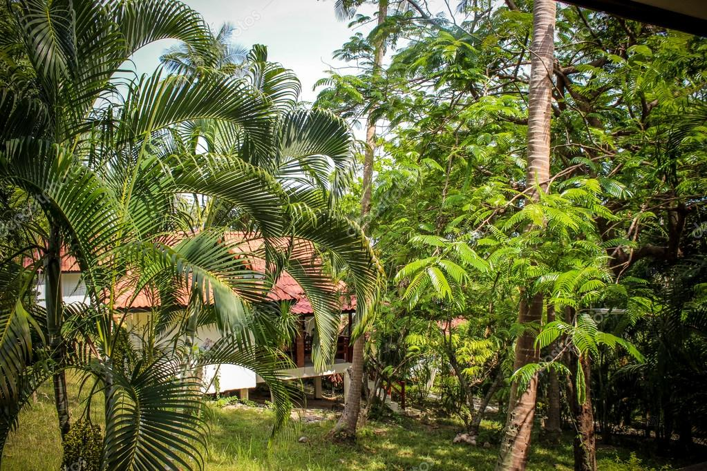 beautiful bungalow resort in jungle, Koh Samui, Thailand