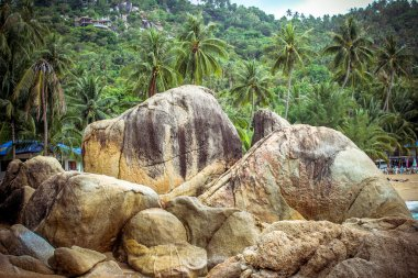 Stones in the sea and palm trees on the mountains of Koh Samui