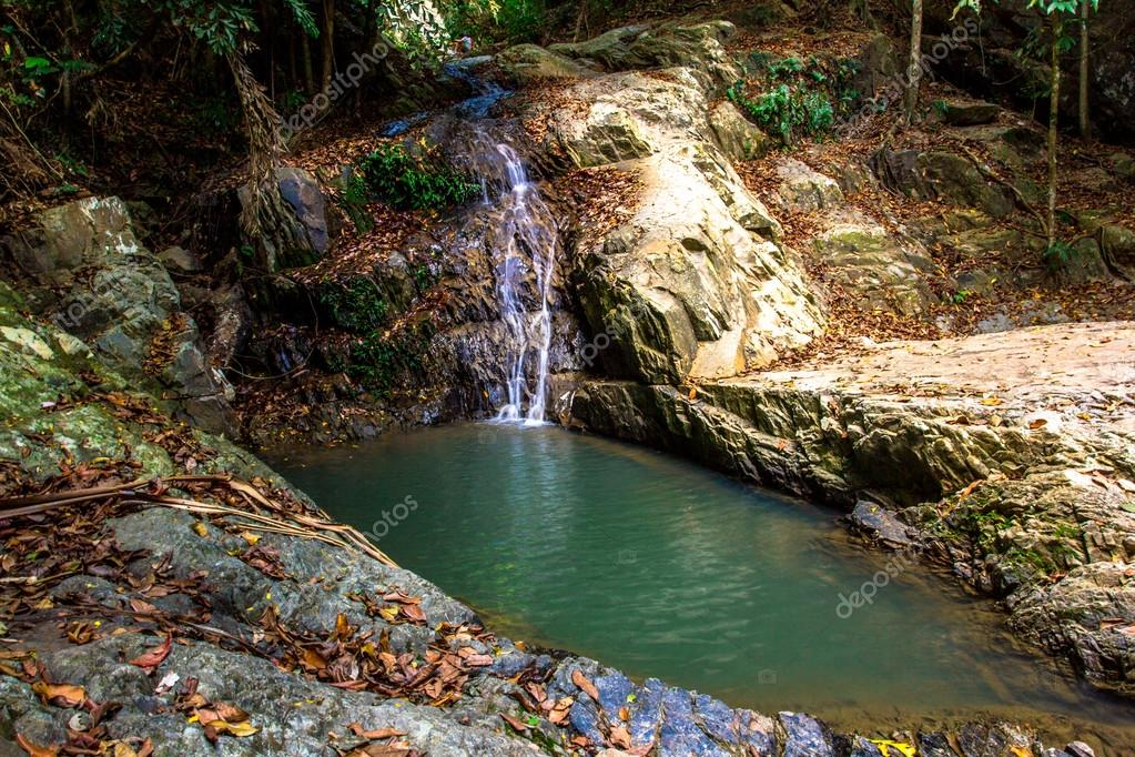 Evergreen forest waterfall in Samui