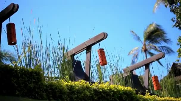 Row of orange Japanese lantern on blue sky, palms and grass background. Video shift motion