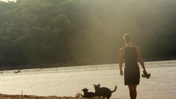 Mladá žena s její psy na pláži