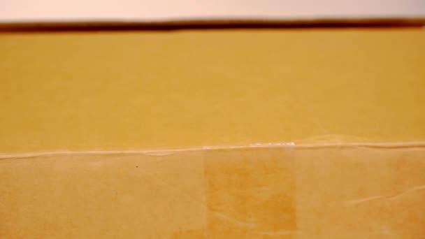kézi nyitott kartondobozban. portré forrása a dobozban. HD