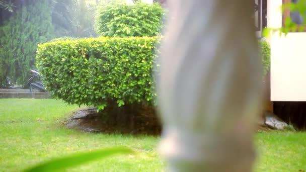 Rozmazané klasické sloupce zábradlí a déšť venkovní. Pohyb videa posun