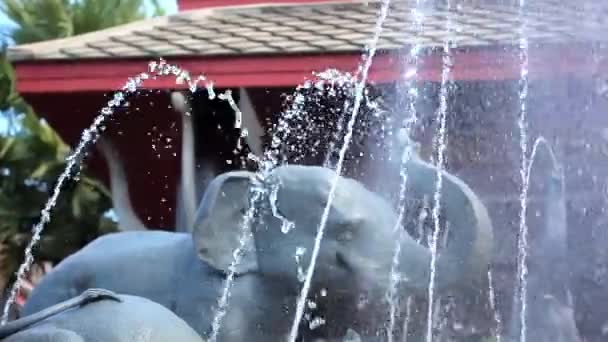 Luxury Outdoor Fountain with sculptures of elephants at a Thai Spa Resort. Video shift motion