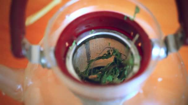 Uvedení na zázvor citron máty a zelený čaj v konvici, lít vařící vodu do konvice a vařit čaj