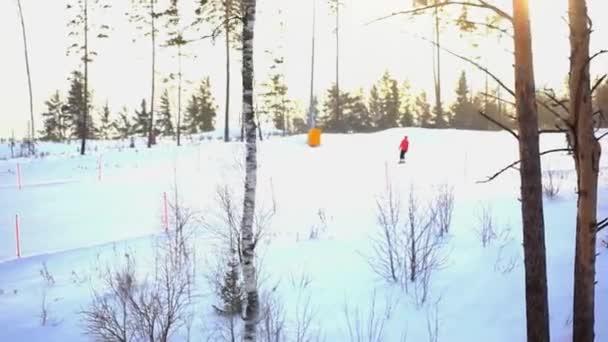 Nejasná, snowboardisty a lyžaře na sjezdovce ve vysokých horách, v popředí soustředěný borovic a slunce na pozadí. Čas západu slunce během sněžení