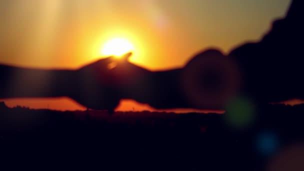 Knuffel Met Licht : Silhouet van gelukkige paar join handen loopt over het veld en