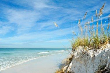 """Картина, постер, плакат, фотообои """"береговая линия флориды """", артикул 57090233"""