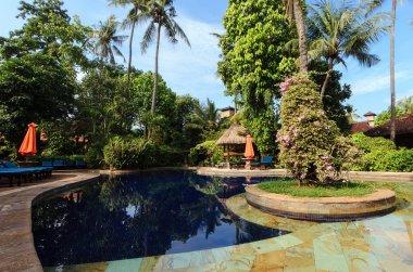 Inside a tropical garden