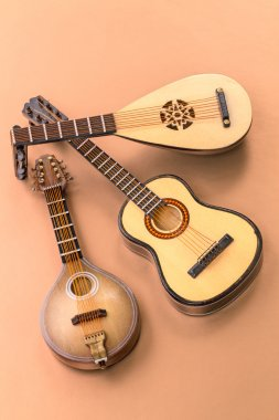 Plucked string instruments