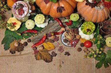background autumn harvest