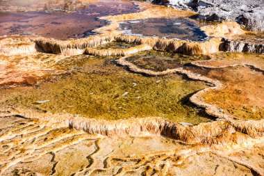 Yellowstone Thermal Feature Close Up