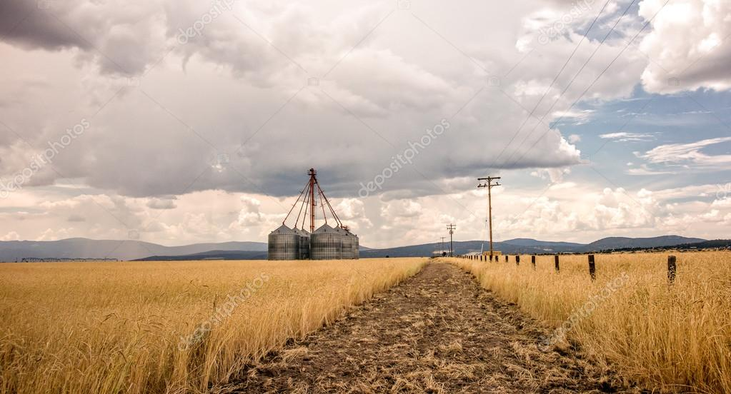 Grain Bins on a Stormy Day