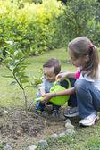 Fotografie glückliche Kinder Garten