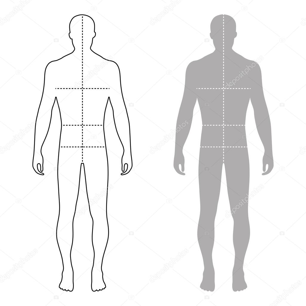 Fashion Man Outlined Template Figure Silhouette With Marked Body Stock Vector