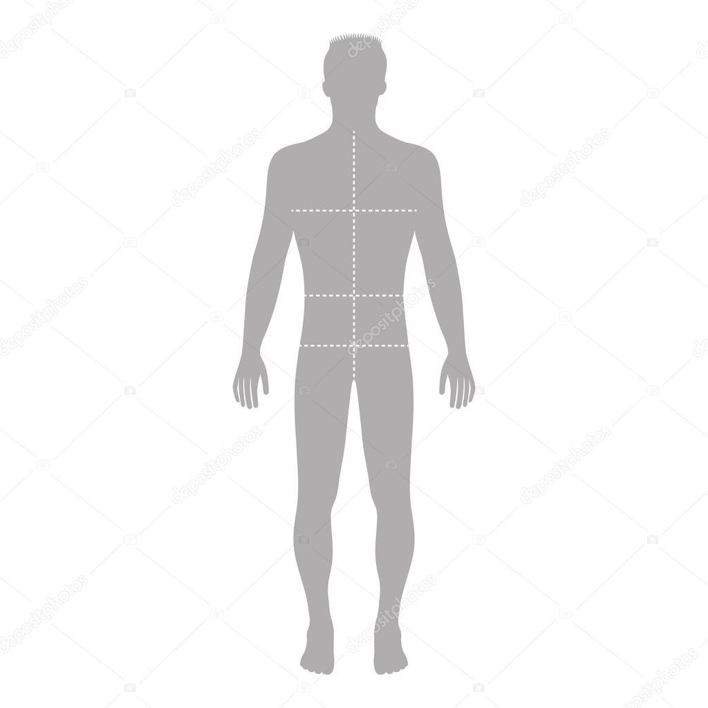 Silueta de figura de plantilla moda hombre con tamaños de cuerpo ...