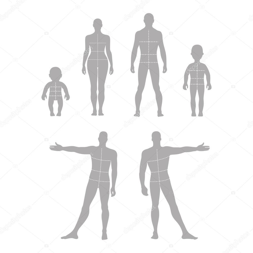 Frente de cuerpo entero, espalda silueta humana conjunto con marcado ...