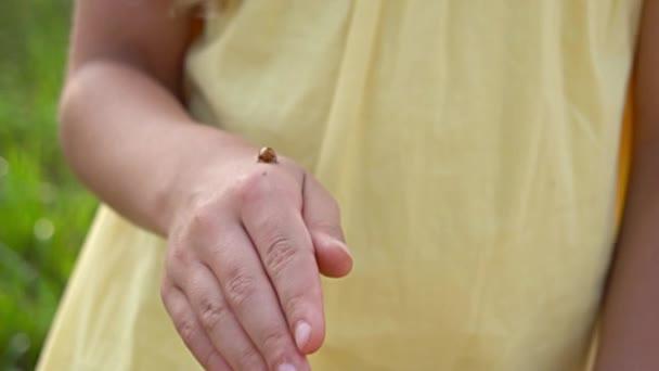 katicabogár a lány kezét