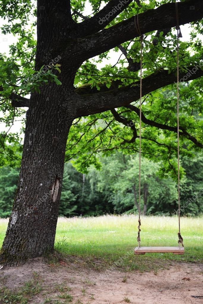 Swing hanging on old oak tree stock vector