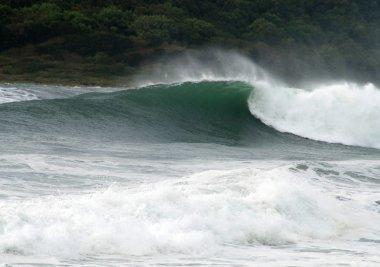Storm sea, big wave