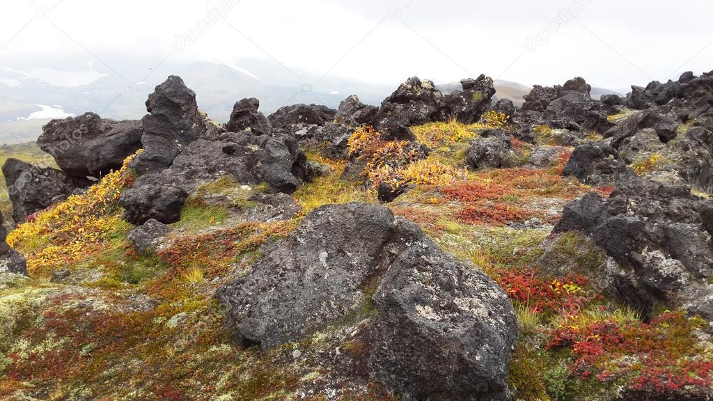 Valley of Geysers - Kamchatka, Russia