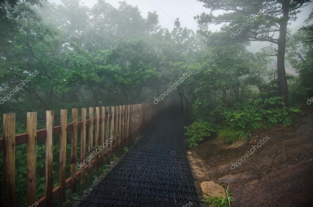 Фотообои Национальный Парк Сораксан, Южная Корея