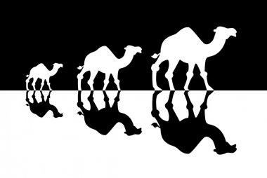 Caravan of camels, Travel concept