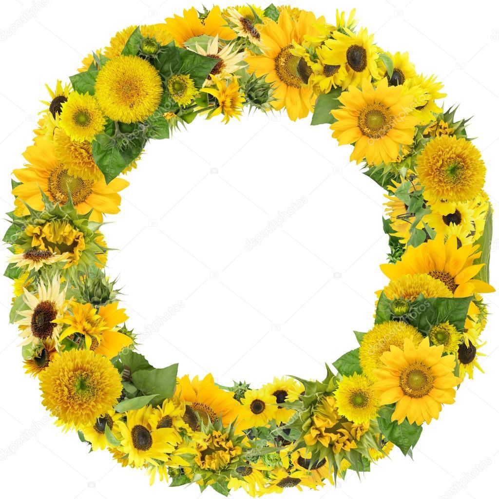 Round summer sunflowers frame — Stock Photo © vilaxlt #102800578