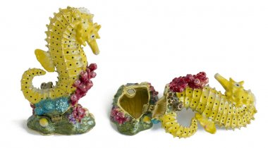 Fish sea horse - metal  box for jewelry