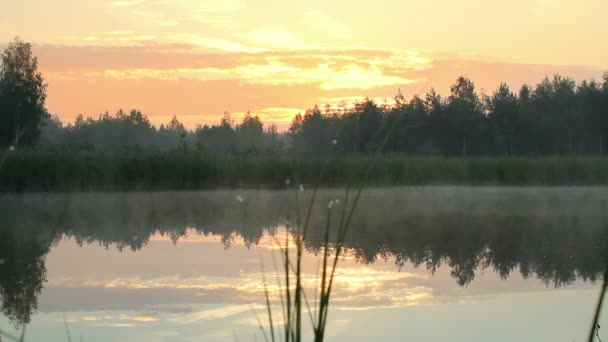 Early morning on the lake. Fog on the water and orange sky before sunrise. The lake is surrounded by forest. moving camera