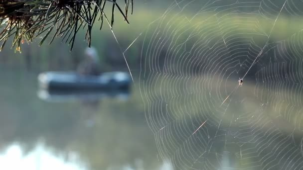The fisherman floats on the river in an inflatable boat. Spider wove a web of the foreground. Activities in the wild