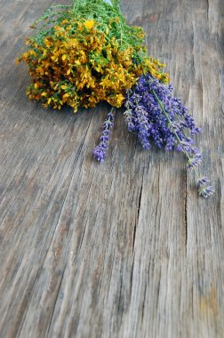 Background of lavender and St John's wort