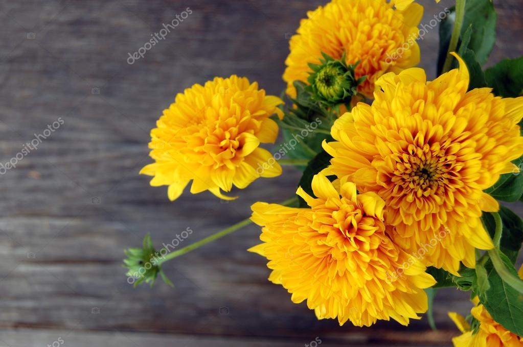 bouquet of Yellow Chrysanthemum