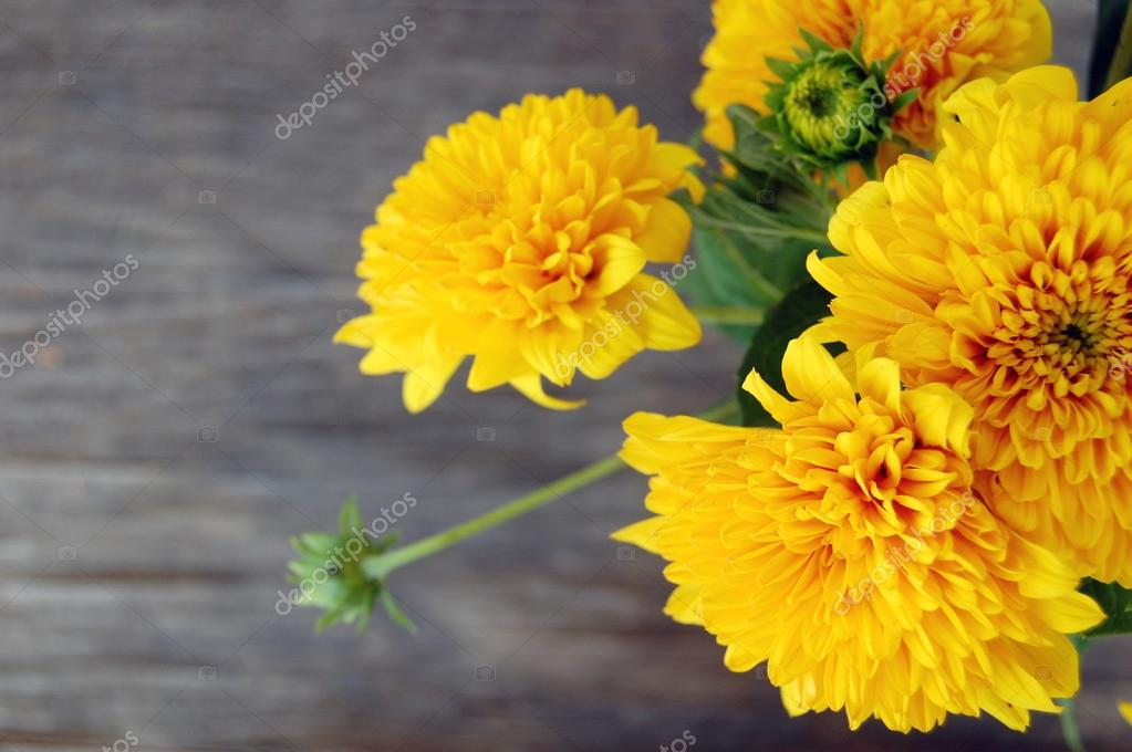 bouquet of Yellow Chrysanthemum