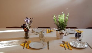 beautiful summer room interior with table set for dinner, filled with sunlight