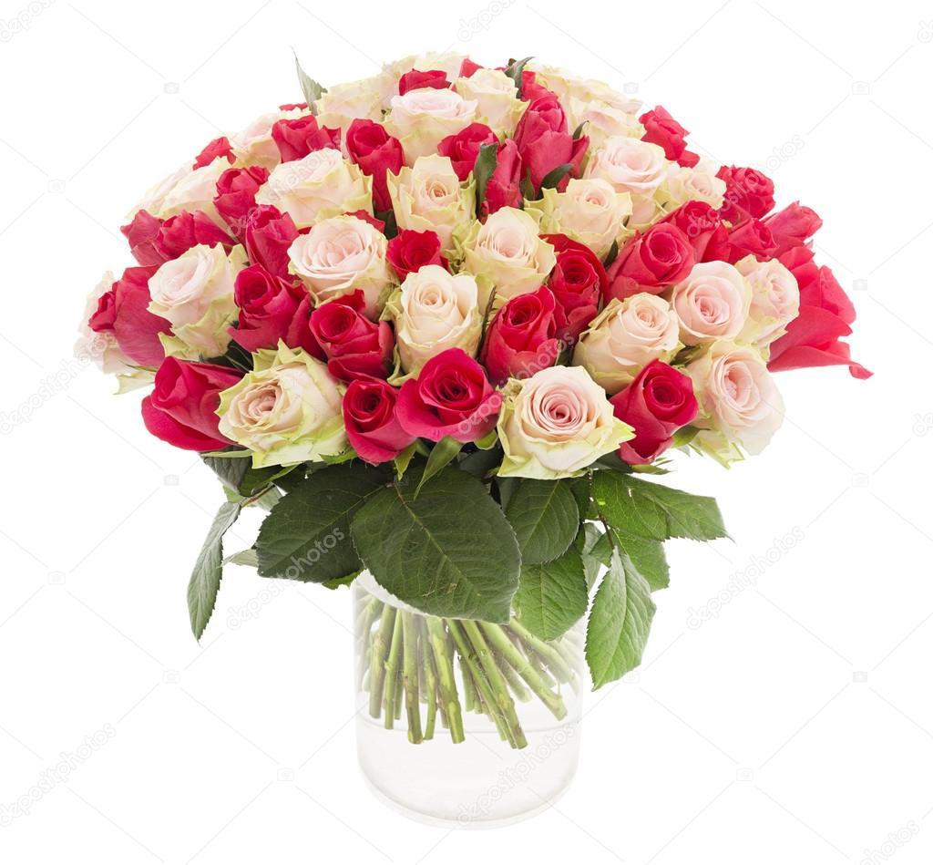 Imágenes Las Rosas Mas Hermosas Rosas Más Bonitas Foto De Stock