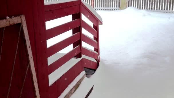 Hóval borított ország ház udvarában