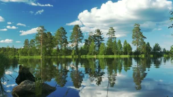 Krásná krajina s lesa na břehu