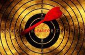 Leader grunge  target