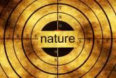 Příroda grunge cíle koncepce