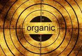 Organické grunge cíl