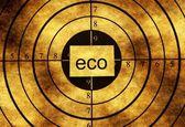 Eco grunge cíle koncepce